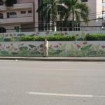21 Hanoi Mural lotus flowers