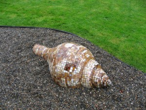 Seashell by Betz Bernhard